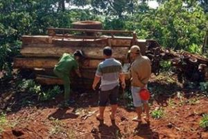 Đắk Nông: Xe công nông tự chế bị lật, 3 người thương vong