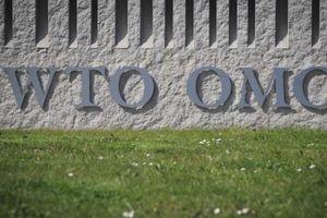 Tác động của chính sách thương mại Mỹ đối với WTO