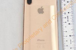 iPhone X bản Gold siêu đẹp sắp ra mắt