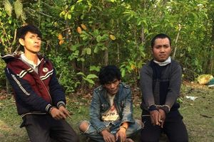 Quảng Bình: Ngăn chặn 24000 viên ma túy vượt biên giới