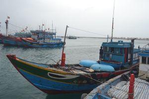8 ngư dân trên tàu cá gặp nạn ở Hoàng Sa đã được đưa về bờ an toàn