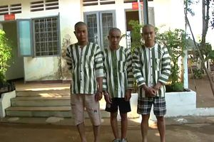 Bắt giam 3 đối tượng hành hung CSGT khi bị kiểm tra nồng độ cồn