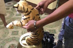 Nghệ An: Phát hiện 2 cá thể hổ ngâm trong bình thủy tinh