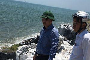 Biển Cửa Đại tan hoang, Quảng Nam họp khẩn tìm giải pháp