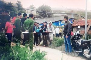 Kéo điện lưới chích cá, 2 thanh niên thiệt mạng