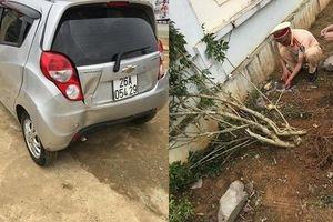 Hé lộ nguyên nhân vụ cô giáo lùi xe khiến 2 học sinh thương vong ở Sơn La