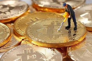 Đào bitcoin vẫn còn lỗ