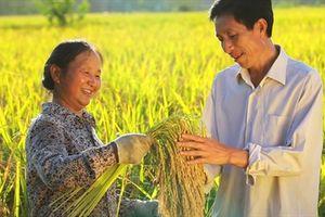 Trung Quốc hiện thực hóa giấc mơ nông nghiệp công nghệ cao
