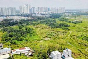Kiểm tra việc chuyển nhượng đất công cho Công ty Quốc Cường Gia Lai