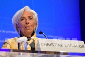 Căng thẳng thương mại Mỹ - Trung 'phủ bóng' Hội nghị Mùa xuân IMF - WB