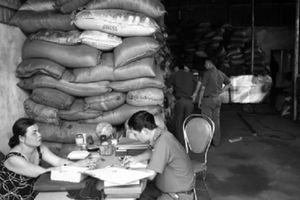Nhuộm pin con ó vào phế phẩm cà phê: Bán rẻ lương tâm cho đồng tiền nhơ nhớp