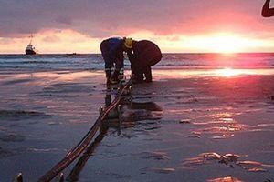 Chuẩn bị nghỉ lễ 30/4 - 1/5 dài ngày, cáp quang biển APG 'lăn đùng' gặp sự cố