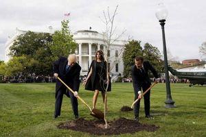 Tổng thống Pháp tặng cây sồi cho người đồng cấp Mỹ