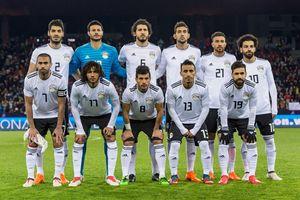 Đội tuyển Ai Cập World Cup 2018: Một gia đình với một mục tiêu