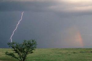 Lên rẫy gặp mưa dông, 2 vợ chồng bị sét đánh tử vong