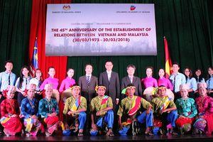 Giao lưu nghệ thuật chào mừng 45 năm quan hệ ngoại giao Việt Nam - Malaysia