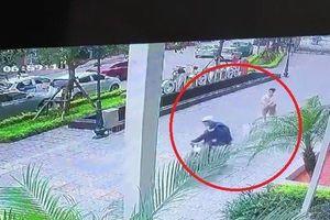 Clip: Cẩu tặc táo tợn cướp chó ngay trước sảnh chung cư ở Hà Nội