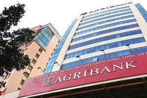 400 tài khoản Agribank bị hack, nhiều người mất tiền trong đêm