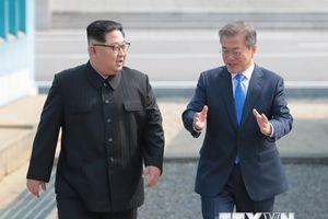 Thượng đỉnh liên Triều 2018: Trồng cây hòa bình - vun đắp tương lai