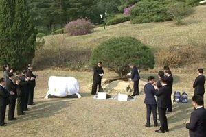 Điều đặc biệt của cây lưu niệm trồng tại cuộc gặp thượng đỉnh liên Triều