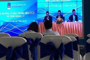 Đại hội đồng cổ đông GAS: Chưa có hoạt động gì mới trong thoái vốn