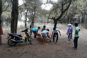Nam thanh niên chết trong rừng thông, để thư tuyệt mệnh