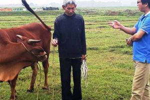 Đóng phí... vịt mót lúa, bò ăn cỏ: Chuyện tưởng như đùa!