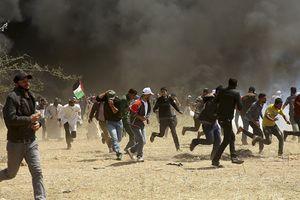 Palestine lên án việc đưa trẻ em đến Gaza để biểu tình