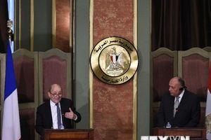 Ai Cập và Pháp tăng cường phối hợp ứng phó thách thức khu vực