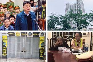 Tin tức Hà Nội 24h: Bẫy đa cấp giữa thủ đô, nhà chọc trời nhuộm đỏ cờ hoa