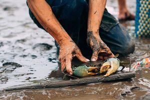 Những hình ảnh đẹp về người lao động trong ngày 1.5