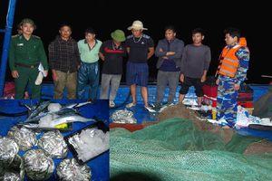 Truy bắt 2 tàu khai thác tận diệt thủy sản ở Hà Tĩnh