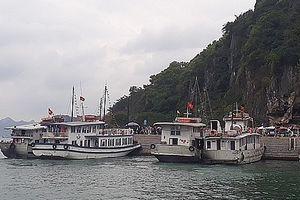 Tạm đình chỉ 4 tàu du lịch để kiểm tra mức độ an toàn