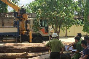 Lãnh đạo Cục Kiểm lâm nói gì về trùm gỗ Phượng 'râu' bị bắt?
