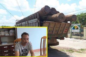 Bắt trùm buôn lậu gỗ Phượng 'râu': Tạm giam 5 nghi can