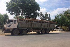 Vụ gỗ lậu sát Đồn Biên phòng: Mượn danh vớt gỗ thanh lý để tuồn từ Campuchia về