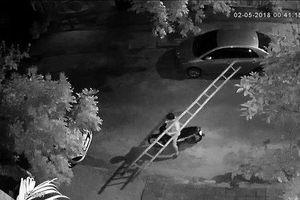 Nam thanh niên ngang nhiên vác thang đi ăn trộm giữa trung tâm TP Đà Nẵng