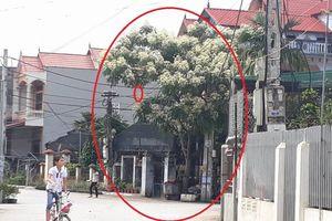 Bố cháu bé nghi bị bắt cóc ở Hưng Yên: 'May nhà tôi phúc lớn'
