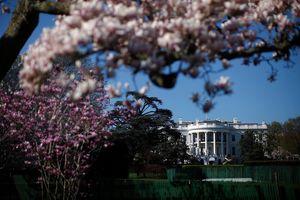 Chùm ảnh: Khám phá những khu vườn bí mật của Nhà Trắng