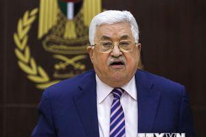 Tổng thống Palestine xin lỗi vì bình luận về diệt chủng người Do Thái