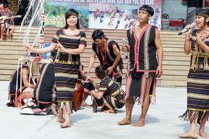 Đưa văn hóa, lễ hội dân tộc Xơ Đăng xuống phố