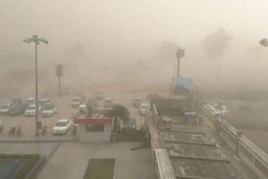 Số người thiệt mạng vì bão bụi ở Ấn Độ lên tới hơn 110 người