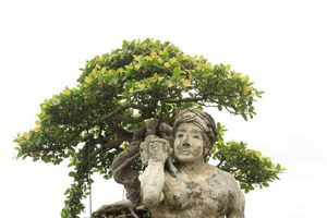 Bài thơ 'Thạch Sanh cổ tích giữa đời thường'
