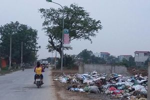 Bãi rác ngay trên tỉnh lộ