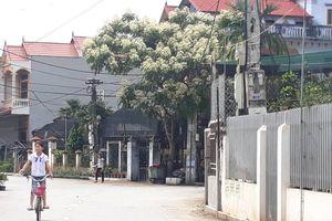 Nghi bắt cóc ở Hưng Yên: Bố cháu bé kể tường tận sự việc