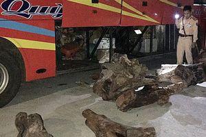 Tịch thu hơn 800kg gỗ quý vận chuyển trái phép