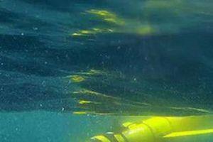 Tiết lộ gây sốc về vùng nước chết rộng hàng ngàn kilomet đe dọa nhân loại
