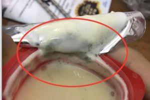 Sữa chua mốc xanh dù vẫn còn hạn sử dụng