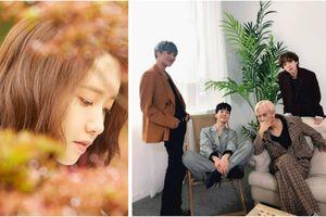 360 độ Kpop ngày 4/5: Yoona kết hợp cùng 'ông xã' Hyori, WINNER giành cúp thứ 4