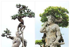 Gửi trọn tình yêu 'tác phẩm' cây cảnh về với Thủ đô